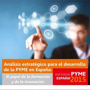 INFORME PYME ESPAÑA 2015 *
